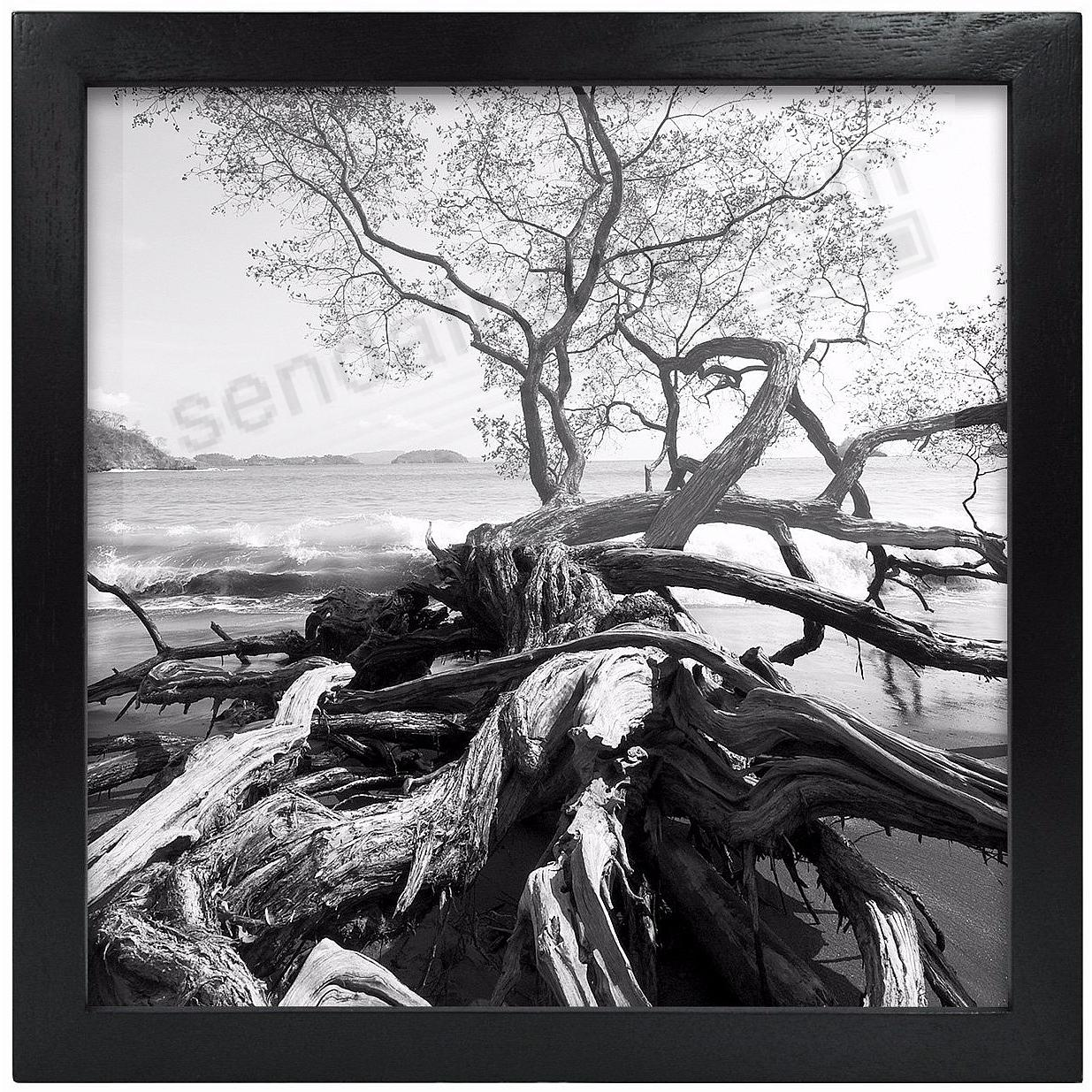 Art Shadow-Box 1-3/8in depth Black Wood 10x10 frame  by MCS®