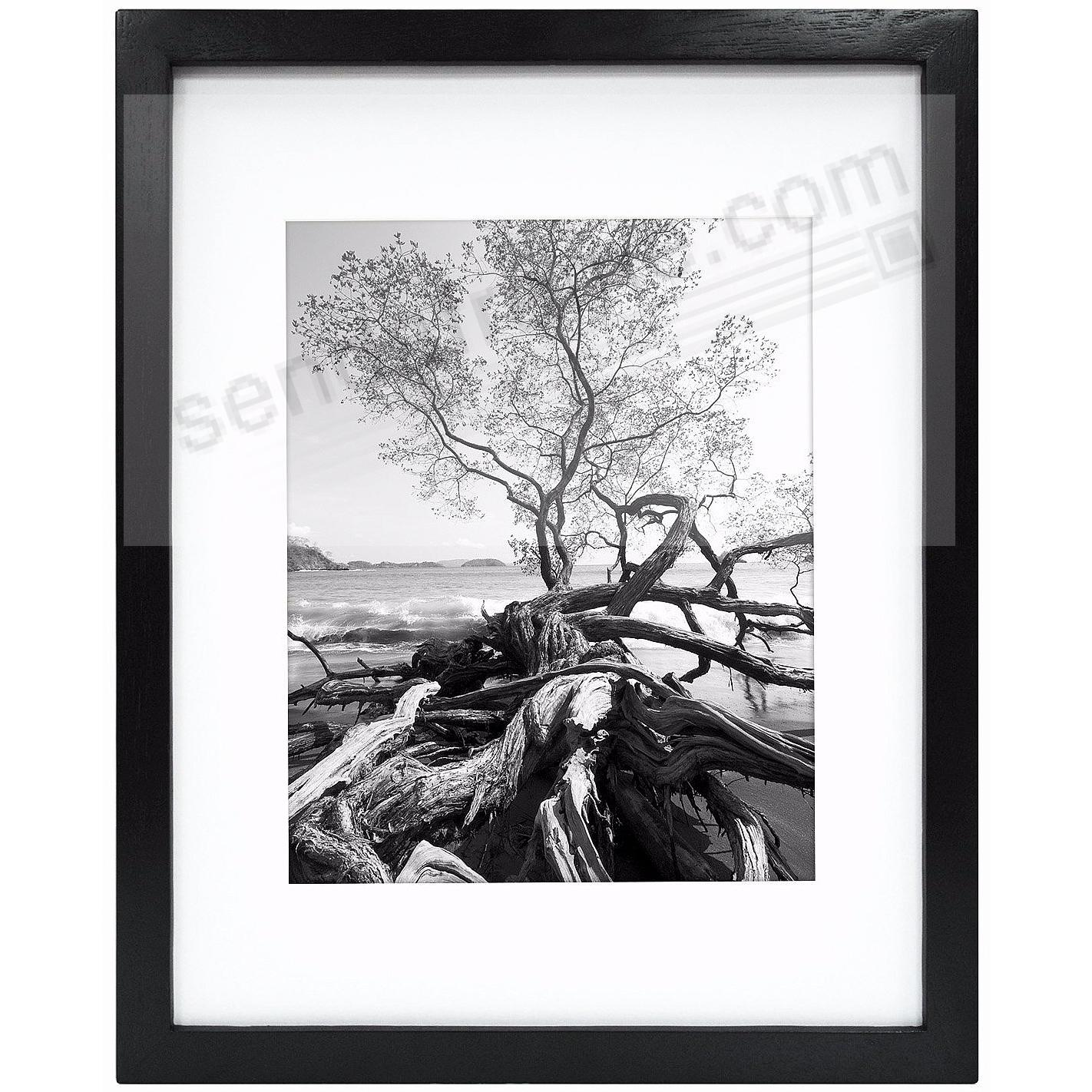 Art Shadow-Box 8x10/5x7 Black Wood frame w/1-3/8in depth by MCS®