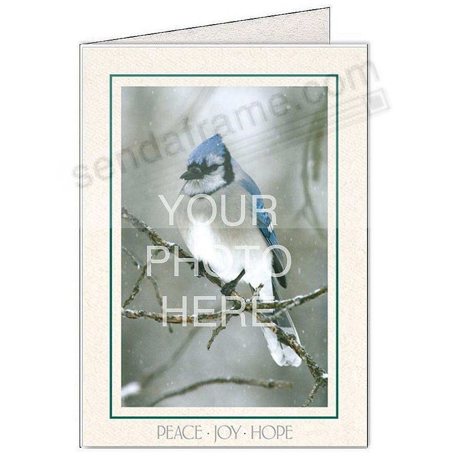Natural PEACE-JOY-HOPE Photo Insert Card (sold in 10s)