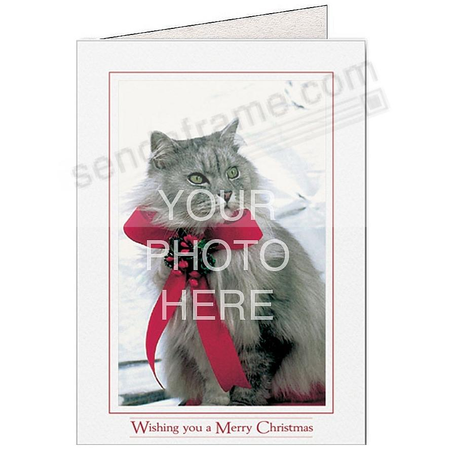 Bright-White WISHING YOU A MERRY CHRISTMAS Photo Insert Card (sold in 10s)
