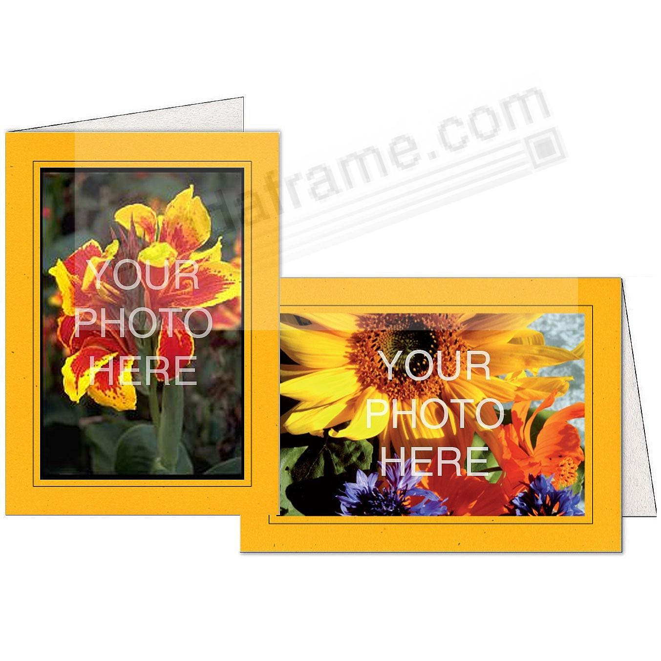 SUNFLOWER-ORANGE w/Black Trim Border Photo Insert Card (sold in 10s)