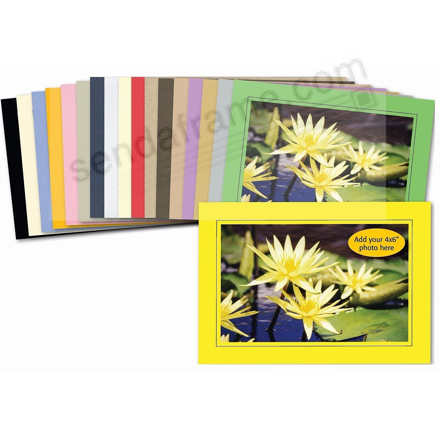 SAMPLE PACK Solid Color w/Border Trim Photo Insert Cards (package of 18)