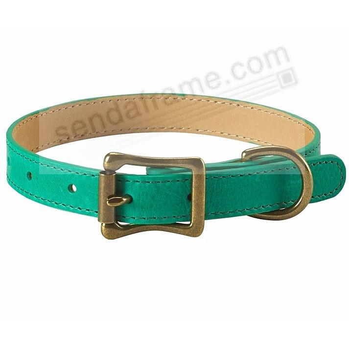 MEDIUM DOG COLLAR EMERALD-GREEN 16-19in LEATHER by Graphic Image™