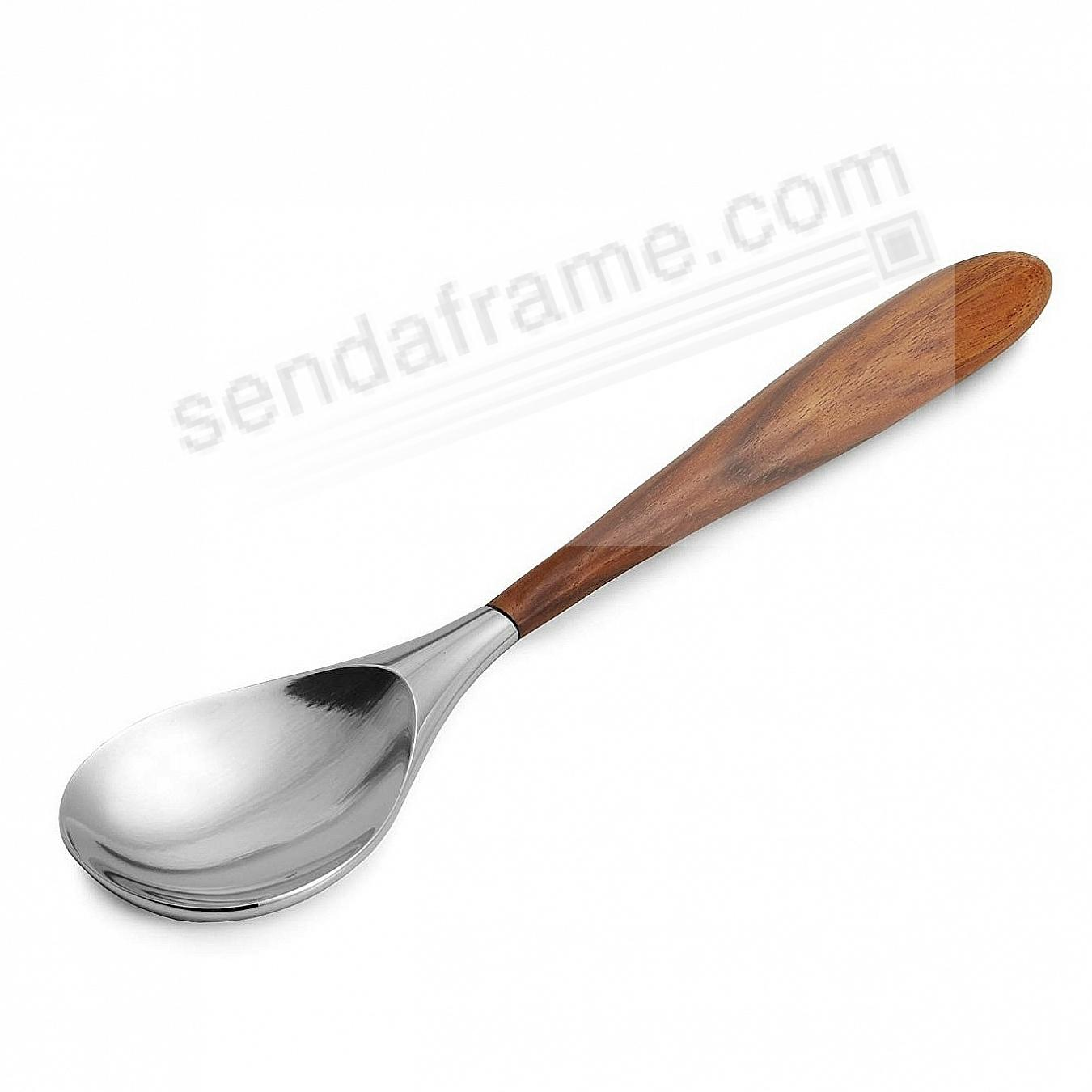 CURVO SERVING SPOON crafted by Nambe®