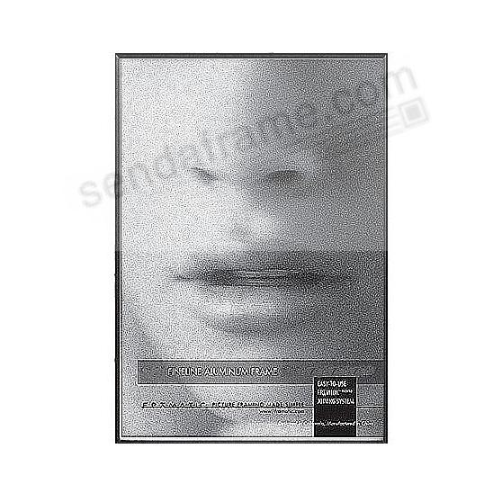 FINELINE Black Aluminum 4x6 by Framatic®