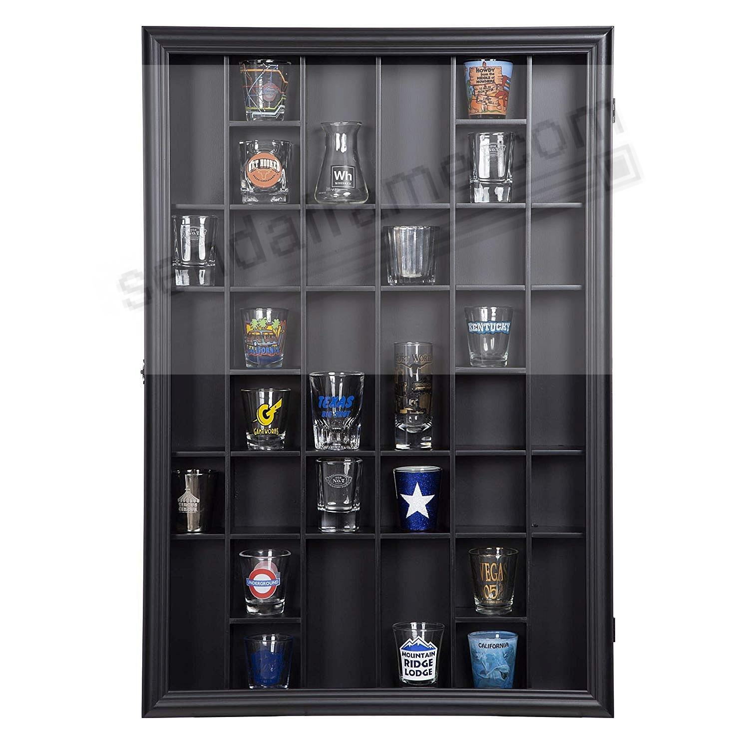 Gallery Solutions 17x21 36-Opening Display Case with Hinged Front in Black