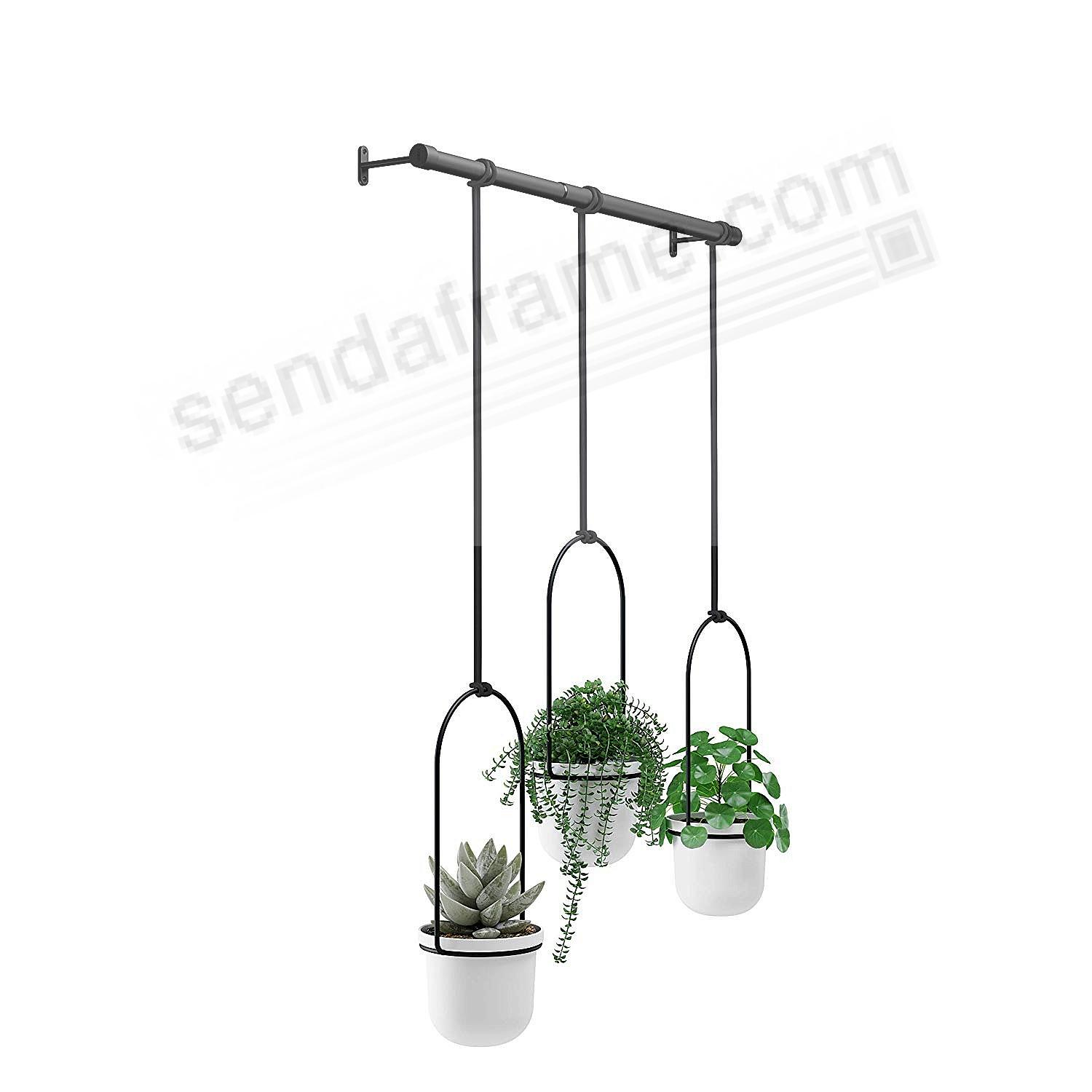 TRIFLORA HANGING PLANTER White/Black by Umbra